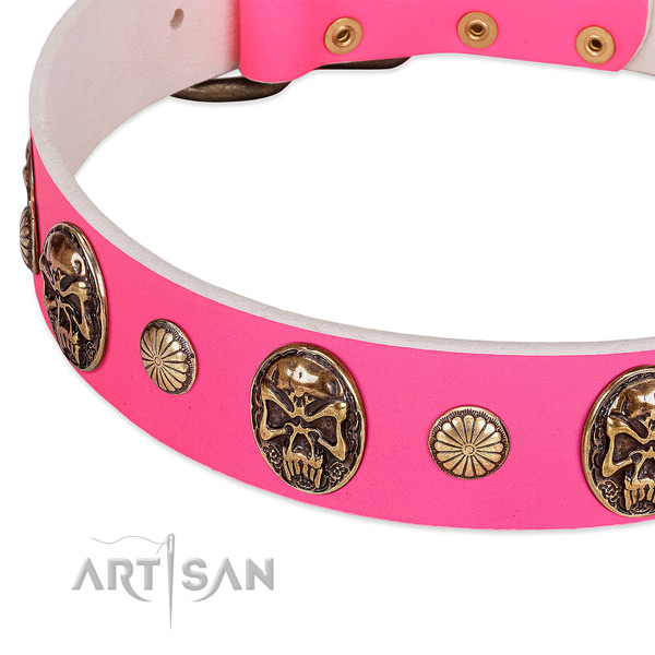 Corrosion proof studs on full grain leather dog collar for your dog