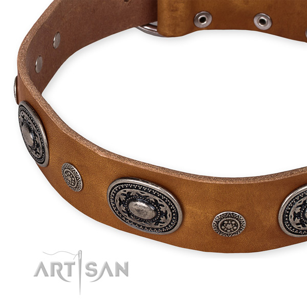Best quality genuine leather dog collar created for your beautiful dog