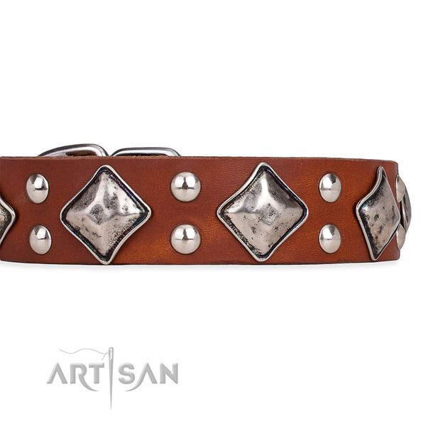Full grain genuine leather dog collar with stylish design reliable decorations