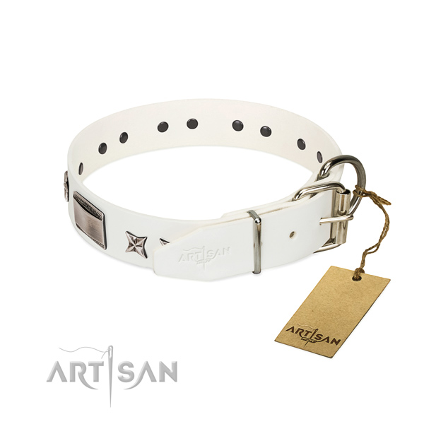 Best quality collar of leather for your lovely canine