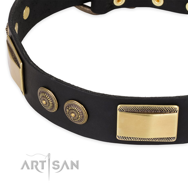 Stunning full grain natural leather collar for your lovely dog