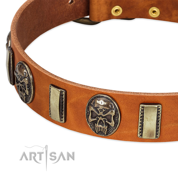 Reliable decorations on leather dog collar for your canine