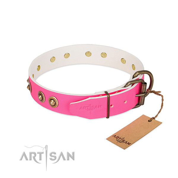 Full grain leather dog collar with rust resistant hardware and decorations