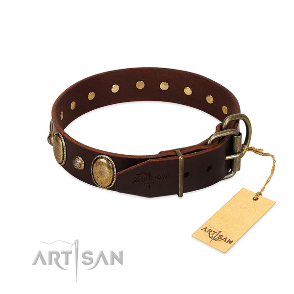Corrosion proof buckle on leather collar for basic training your pet