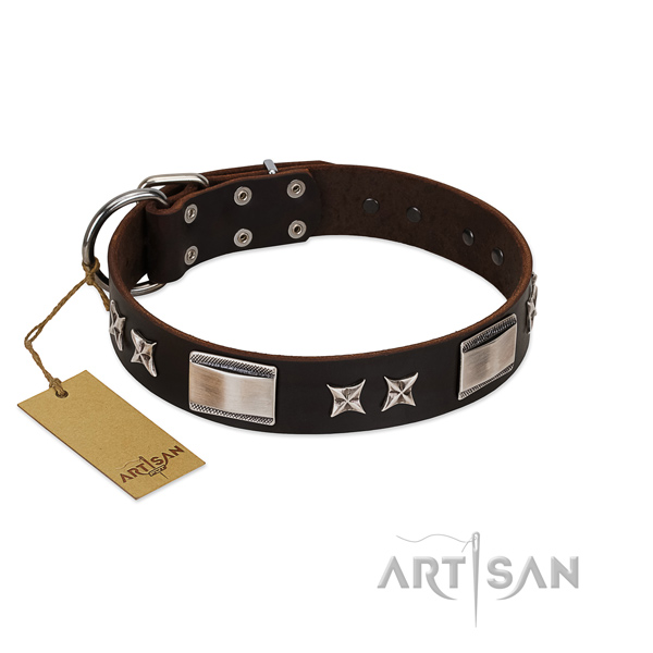 Stylish dog collar of full grain leather
