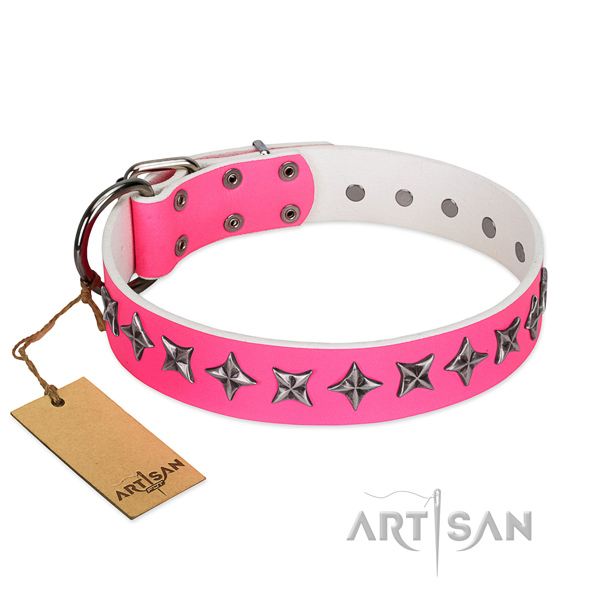 Durable natural leather dog collar with unusual adornments