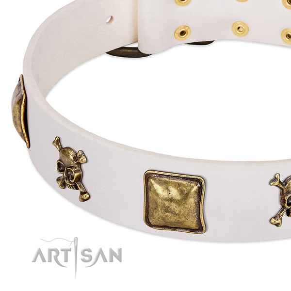 Walking natural leather dog collar with impressive studs
