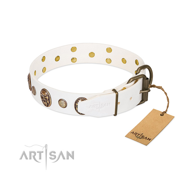 Corrosion proof hardware on leather collar for basic training your pet