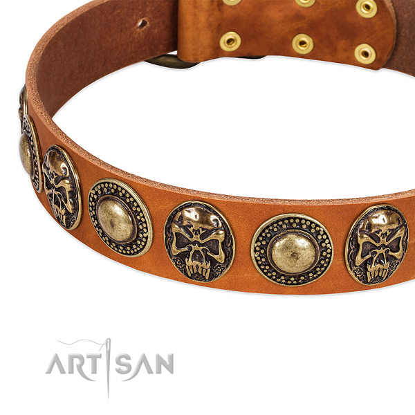 Strong adornments on genuine leather dog collar for your doggie