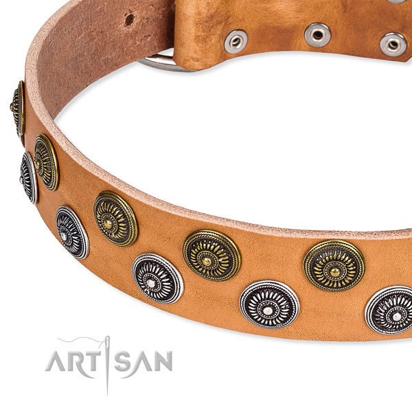 Daily use adorned dog collar of fine quality natural leather