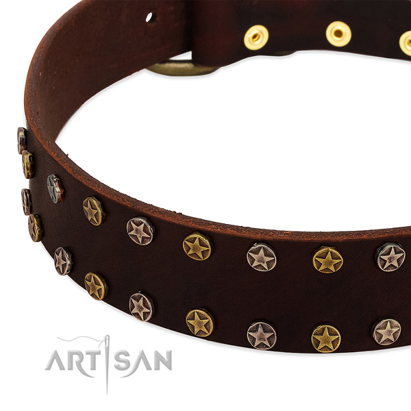 Comfortable wearing full grain leather dog collar with trendy adornments