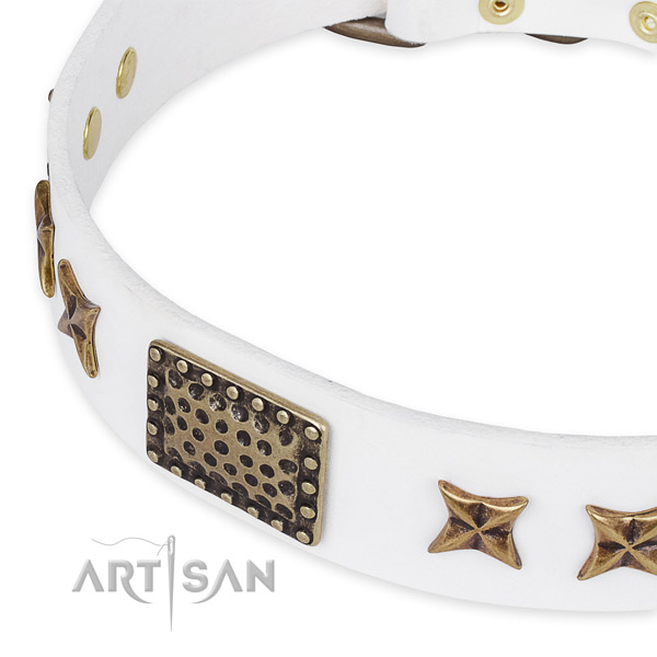 Full grain genuine leather collar with strong D-ring for your attractive four-legged friend