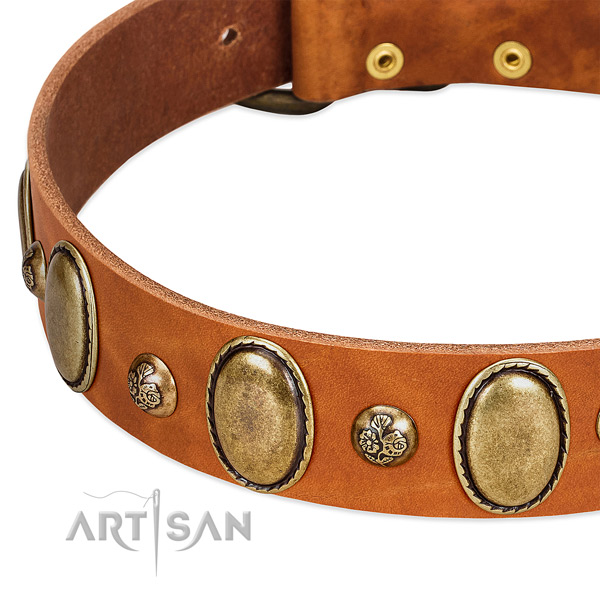 Full grain natural leather dog collar with designer studs