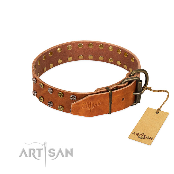 Walking genuine leather dog collar with exceptional decorations