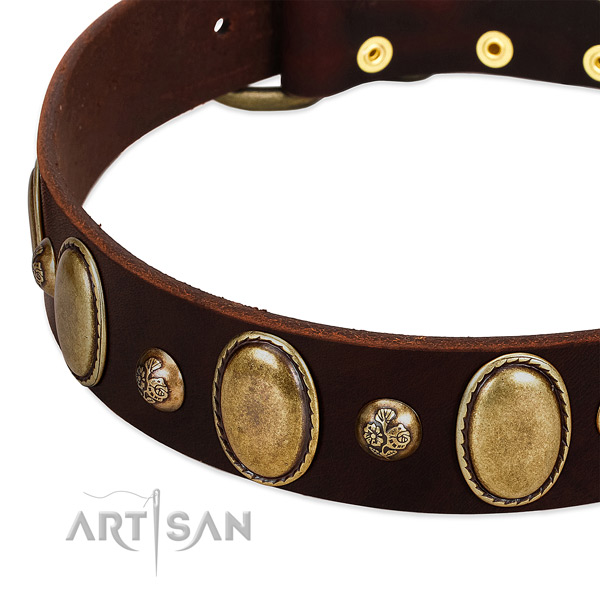Leather dog collar with awesome adornments