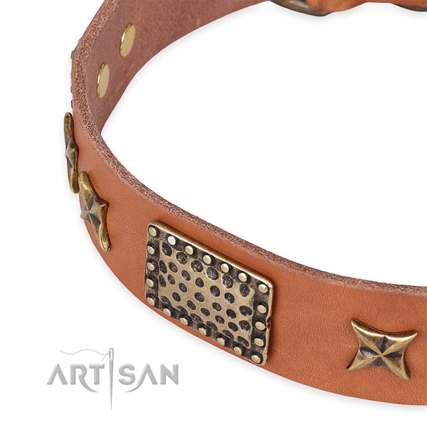 Natural genuine leather collar with corrosion proof hardware for your lovely canine