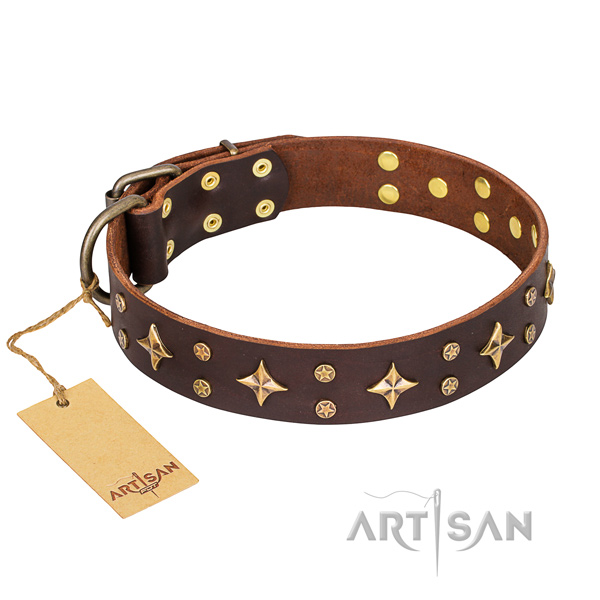 Daily walking dog collar of strong genuine leather with embellishments