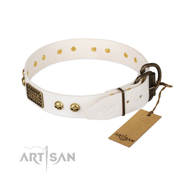 Easy wearing genuine leather dog collar for daily walking your canine