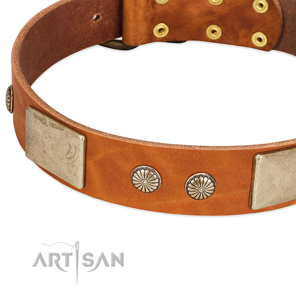 Reliable decorations on natural genuine leather dog collar for your pet