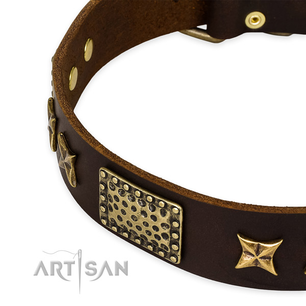 Genuine leather collar with corrosion resistant hardware for your impressive pet