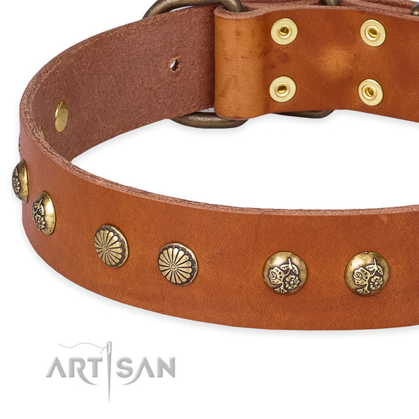 Genuine leather collar with rust resistant buckle for your beautiful pet