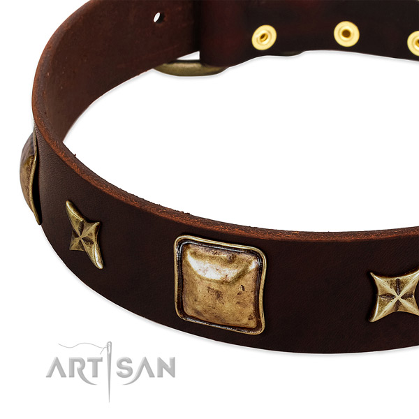 Corrosion resistant traditional buckle on natural genuine leather dog collar for your doggie