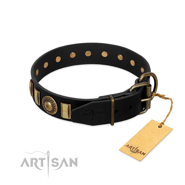 Top notch full grain leather dog collar with adornments