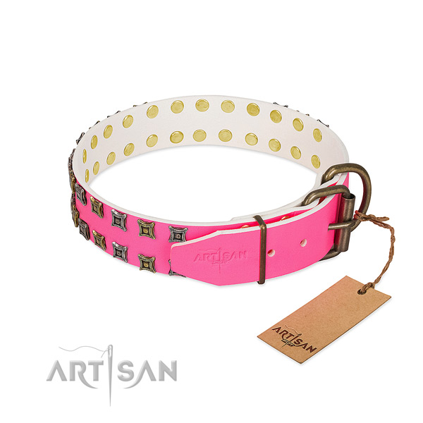 Full grain natural leather collar with stylish embellishments for your dog