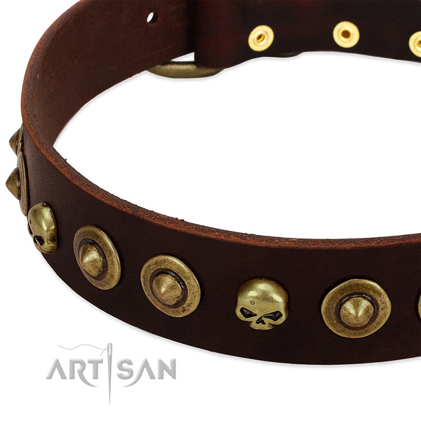 Remarkable embellishments on natural leather collar for your canine