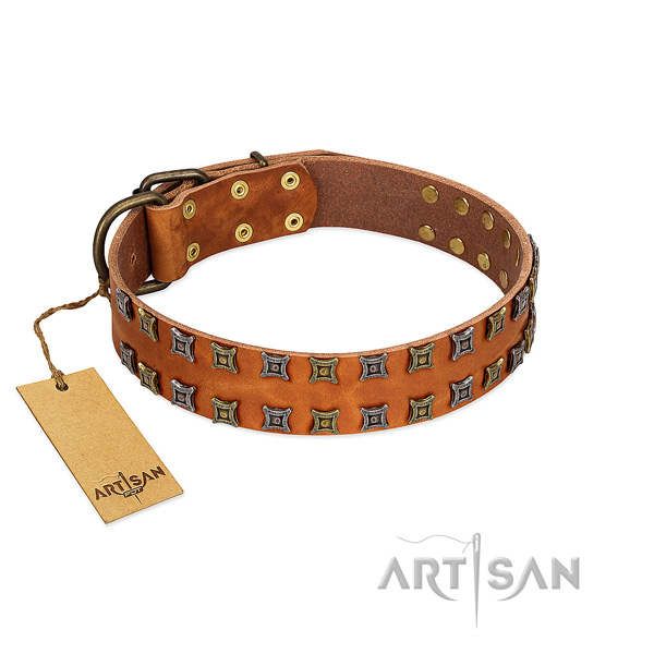 Durable full grain genuine leather dog collar with adornments for your four-legged friend