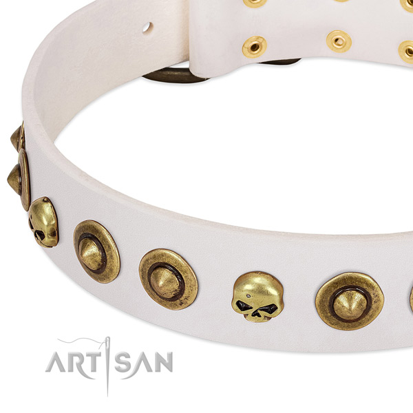 Top notch decorations on full grain leather collar for your canine