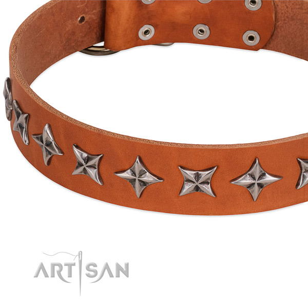 Comfy wearing studded dog collar of quality full grain natural leather