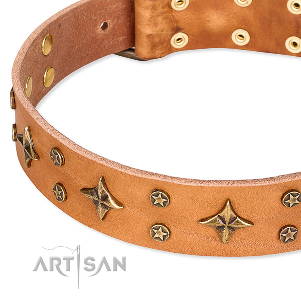 Everyday use decorated dog collar of durable natural leather