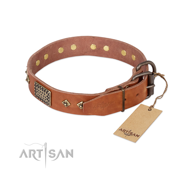 Leather dog collar with strong buckle and adornments