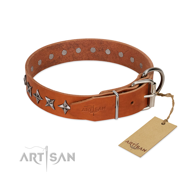 Basic training embellished dog collar of finest quality full grain genuine leather