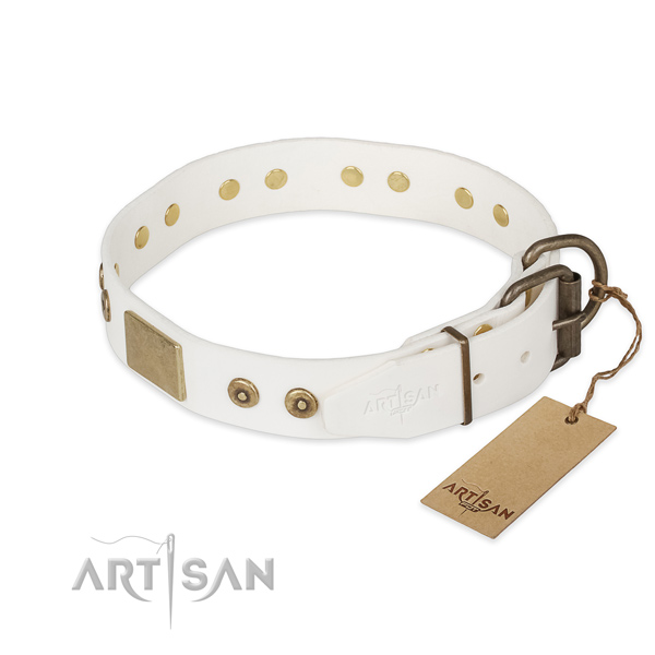 Corrosion resistant traditional buckle on genuine leather collar for daily walking your pet