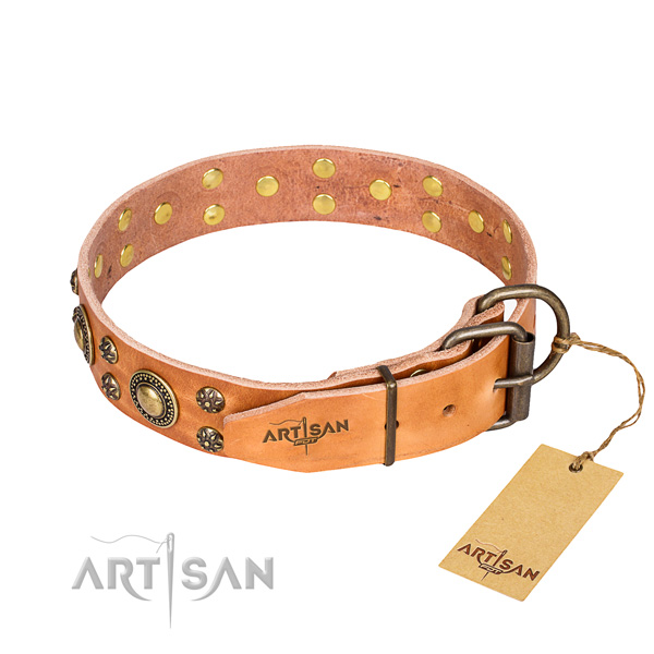 Comfortable wearing studded dog collar of top quality leather