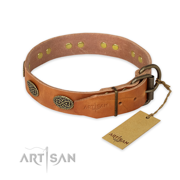 Corrosion resistant fittings on full grain genuine leather collar for fancy walking your pet