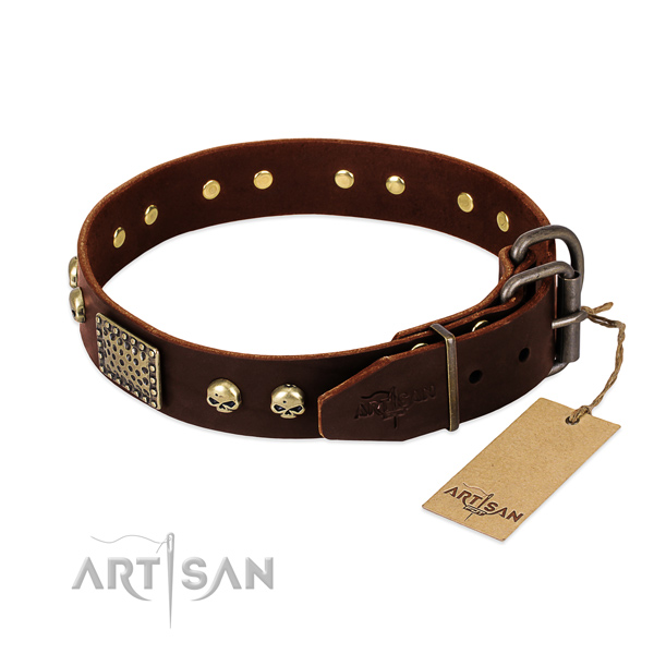 Durable D-ring on walking dog collar