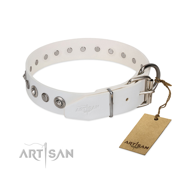 Quality genuine leather dog collar with significant embellishments