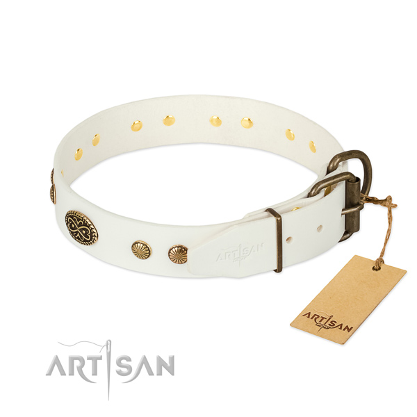 Durable adornments on full grain leather dog collar for your four-legged friend