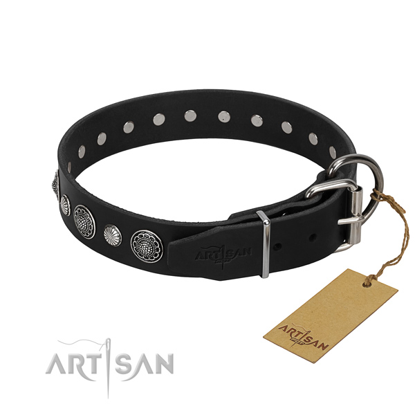 Top notch full grain genuine leather dog collar with extraordinary embellishments