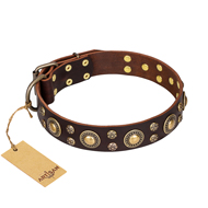 """Flower Melody"" FDT Artisan Brown Leather Bullmastiff Collar with Mixed Studs"