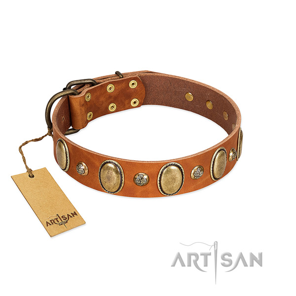 Full grain genuine leather dog collar of gentle to touch material with stylish adornments