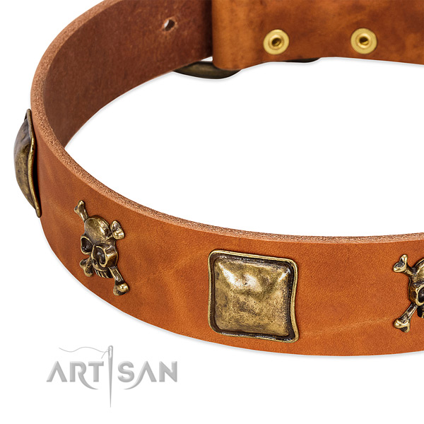 Stunning genuine leather dog collar with rust-proof decorations