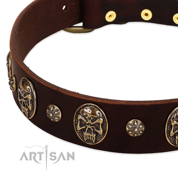 Rust-proof buckle on genuine leather dog collar for your four-legged friend