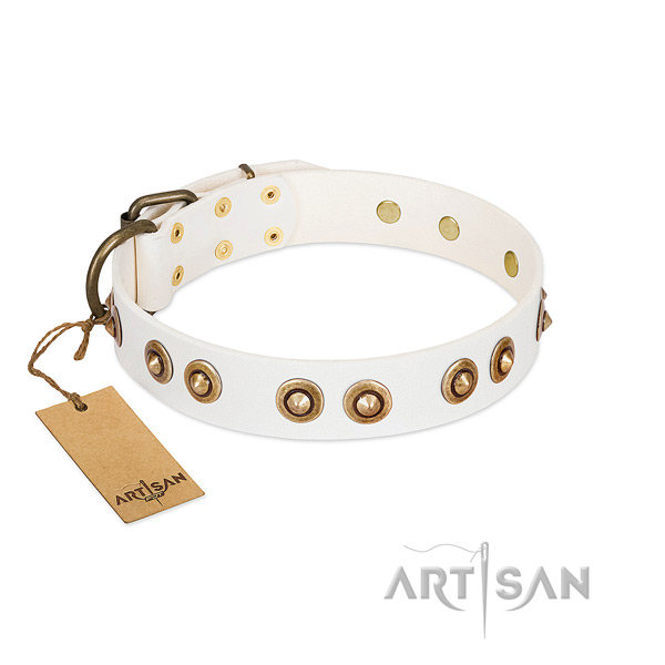 Extraordinary full grain genuine leather collar for your four-legged friend