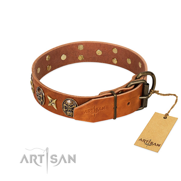 Natural genuine leather dog collar with durable fittings and embellishments