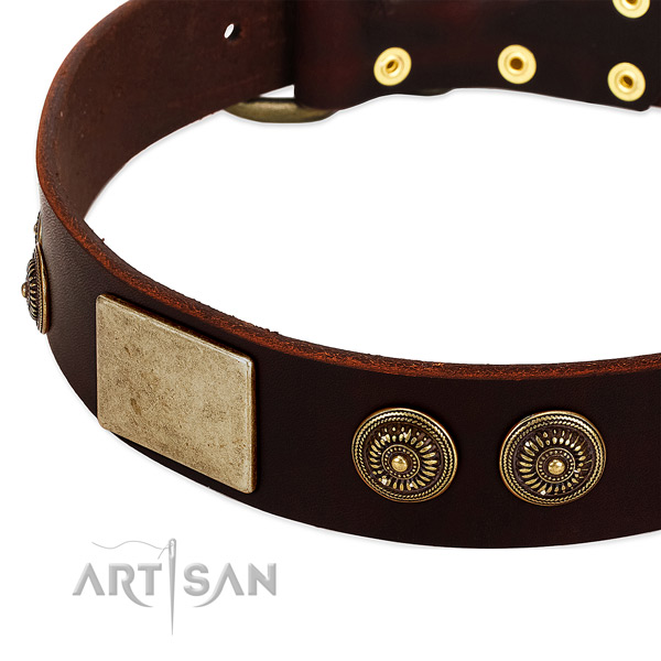 Corrosion proof D-ring on full grain genuine leather dog collar for your four-legged friend