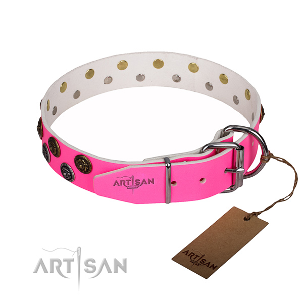 Comfy wearing studded dog collar of best quality leather